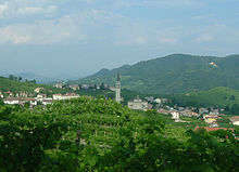 A photograph of vineyards with a small town in the background.
