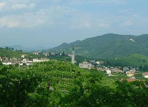 2015 Giro d'Italia - Image: Prosecco vineyards