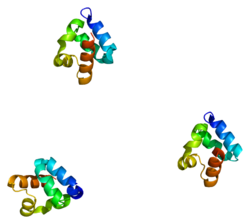 Protein SHANK3 PDB 2f3n.png