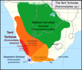 Psammobates tent tortoise species map - Southern Africa.png