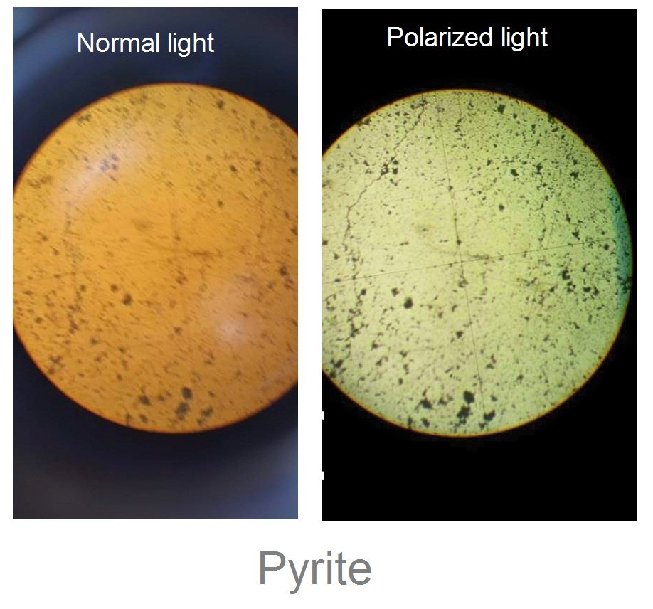 Pyrite under Normal and Polarized light