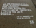 Quotation from film 'What Will You Do When You Catch Me?' advertising XXXIV Polish Film Festival in Gdynia 2009 - 2.jpg