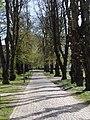 Rådhusparken (allé) 01.jpg