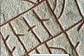 Rökstenen - KMB - 16000300014239.jpg
