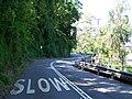 Radnor Street - panoramio.jpg