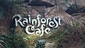 Rainforest Cafe at Animal Kingdom.jpg