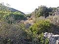 Ramat-ha-Nadiv-manor-trail-837.jpg
