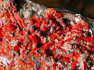 Su Song - Su categorized and accurately described the attributes of many minerals, including the red, pitted surface of realgar seen above.