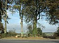Recent tree pruning on the A350 - geograph.org.uk - 1515686.jpg