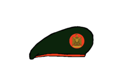 Reconnaissance brigadier Beret - Egyptian Army.png