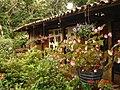 Restaurante Jardin de Celeste - panoramio.jpg