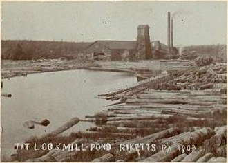 Ricketts Glen State Park - Ricketts mill pond and sawmill in 1903; the village extended into what is now the park.