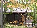 Ricketts Glen State Park Cabin.jpg