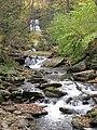 Ricketts Glen State Park Erie Falls 5.jpg