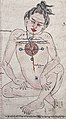 Right figure detail, from- Three anatomical figures from Tibet Wellcome V0036134 (cropped).jpg