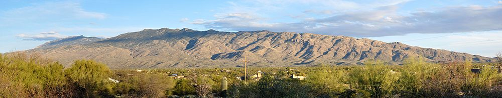 A sparsely vegetated range of mountains rises above a populated area with trees, shrubs, and cacti.