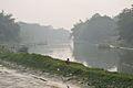 River Churni - Halalpur Krishnapur - Nadia 2016-01-17 9055.JPG