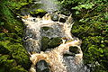 River Doe below Snow Falls (7541).jpg