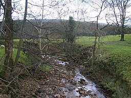 River Grizedale - geograph.org.uk - 1031685.jpg