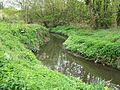 River Pinn - Ickenham - April 2011.jpg