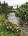 River Truim - geograph.org.uk - 1370546.jpg