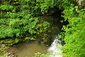 River exit from Dan yr Ogof caves (8928).jpg