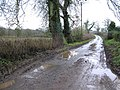 Road at Ballygroby - geograph.org.uk - 300843.jpg