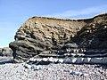 Rockface, Kilve Beach - geograph.org.uk - 229725.jpg