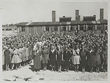 Roll call at Birkenau.jpg