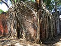 Ross Island, Andaman Islands 2.jpg