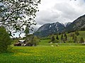 Rubihorn-Nebelhorn01.jpg