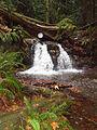Rustic falls Moran State Park WA.jpg