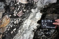 S of Mt Jackson mixed mafic-felsic breccia with tuffisite dyke 2.jpg