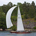 Sailboat 6750.jpg