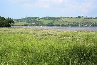 Tamar–Tavy Estuary - Image: Salt marsh on the bank of the River Tamar geograph.org.uk 469684