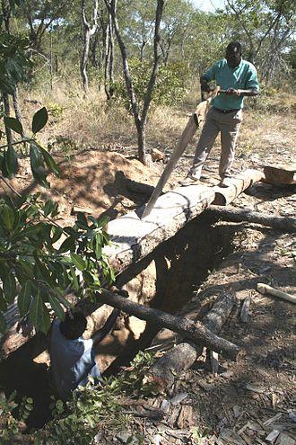 Saw pit - A saw pit in use near Kalomo, Zambia, in 2007