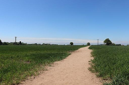 Saxon Mill Fields