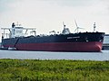 Seaways Kilimanjaro (ship, 2012) IMO 9563237 Port of Rotterdam.JPG