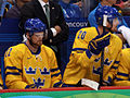 Sedins on bench 2010 oly.jpg