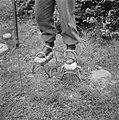 Serie Landmijnen ruimen bij Hoek van HollandDuitse krijgsgevangene op stelten, Bestanddeelnr 900-6497.jpg