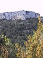 Serrat de l'Avenç 173-7363 IMG.jpg