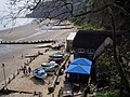 Shanklin Chine - geograph.org.uk - 691080.jpg