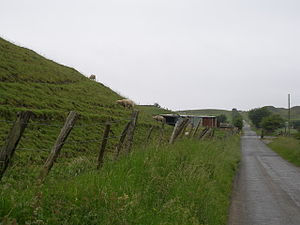 Nantyglo - Pond Road NantygloSheep graze on the side of an old spoil heap