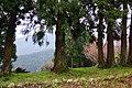 Sheipa Leisure Farm 雪霸休閒農場 - panoramio (5).jpg