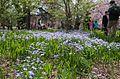 Shinjuku Gyoen(Shinjuku Imperial Garden) - 新宿御苑 - panoramio (29).jpg