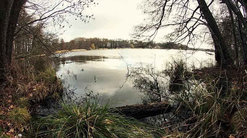 File:Siethener See - Brandenburg (25182903361).jpg