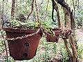 Sigiriya resort4.jpg