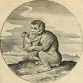 Silenus Alcibiadis, sive, Proteus - vitae humanae ideam, emblemate trifariàm variato, oculis subijciens (1618) (14561513159).jpg