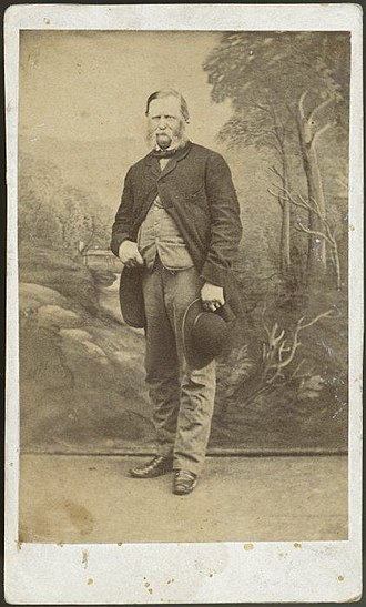 William Fox (politician) - Sir William Fox, between 1880 and 1893