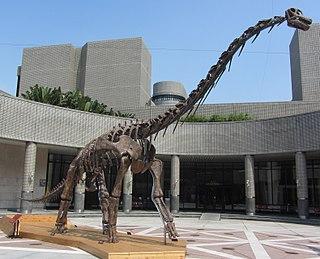 <i>Qiaowanlong</i> genus of reptiles (fossil)